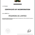 Cashchat legal document showing the certificate of incorporation